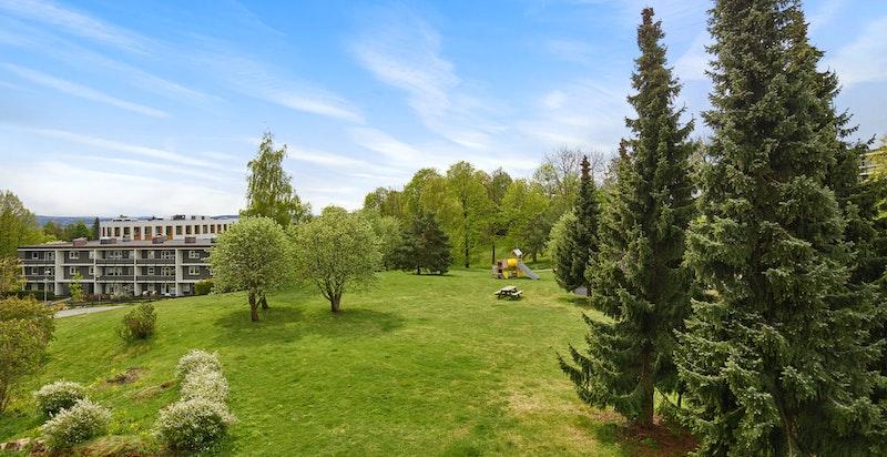 Grøntområde rett utenfor boligen