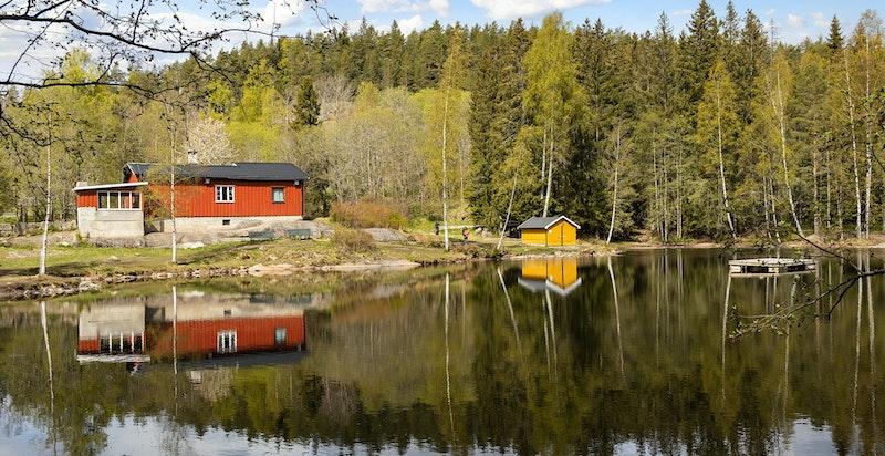 Ved dammen kan man raste, bade, fiske eller ta turen videre inn i marka.