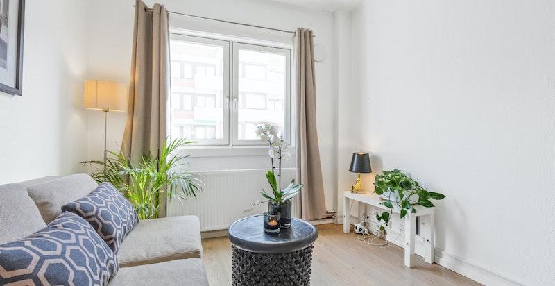 Arealeffektiv planløsning. Her kan man f.eks møblere med en sovesofa og en skrivebord/spisebord slik at man får mest ut av plassen