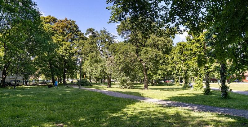 Det er flere fine parkanlegg i området, bl.a. Hallénparken, Birkelunden og Torshovdalen.