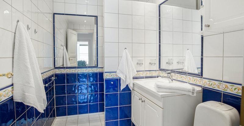 Romslig hovedbad med wc og dusjnisje