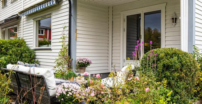 Frodig beplantning mellom terrasse og hage.