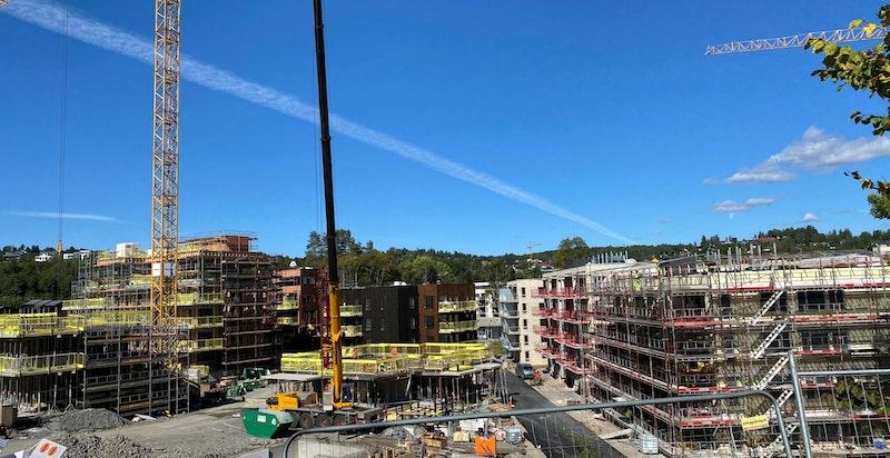 Hele prosjektet består av rekkehus og leiligheter.