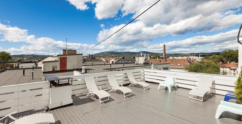 Stor og flott felles takterrasse med solstoler og annet møblement. Sol hele dagen