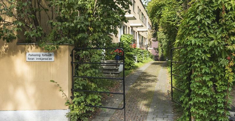Sjarmerende inngang til gangvei ved leilighetene