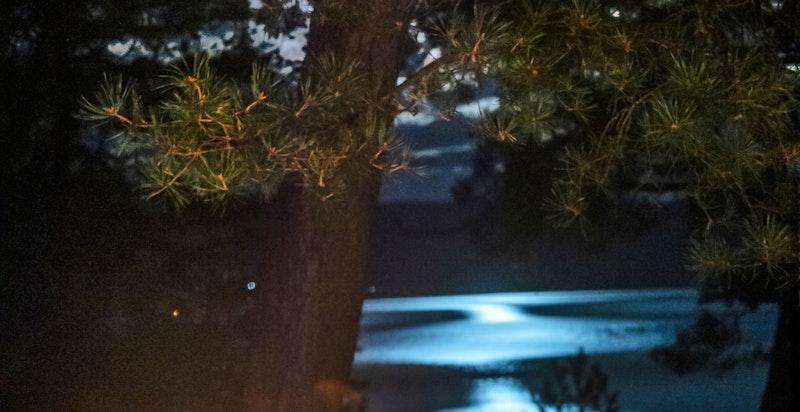 Kveldsbilde fra uteområdet ovenfor hytta