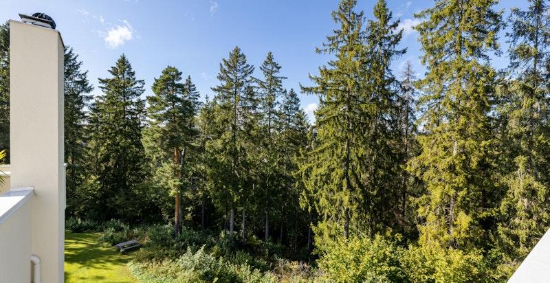 Utsikt - umiddelbar nærhet til turstier langsmed idylliske Lysakerelven