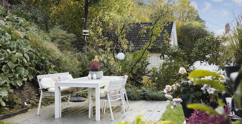 Hyggelig, usjenert og svært solrik terrasse med trapp opp til veranda og ned i hagen