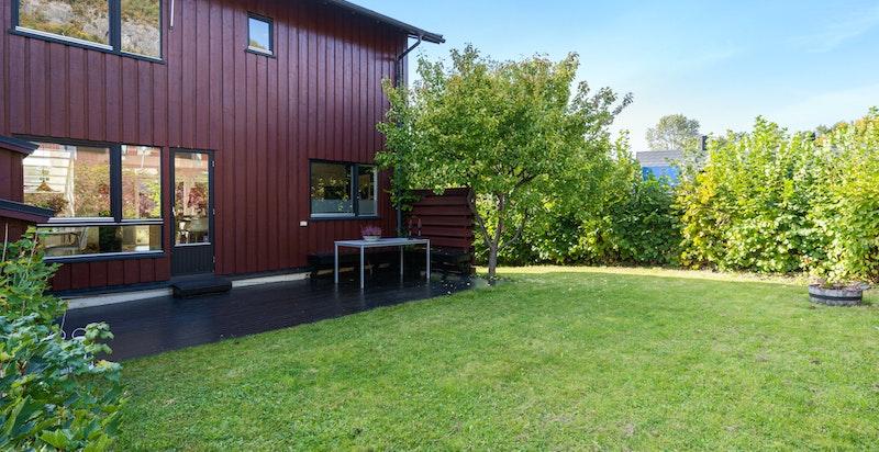 Stor flat skjermet hage og terrasse. Formiddagssol.