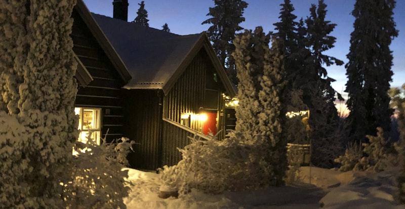 Vinterstemning i Ullveien