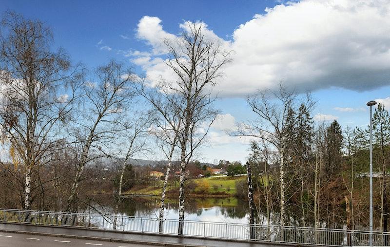 Utsikt mot Holmendammen