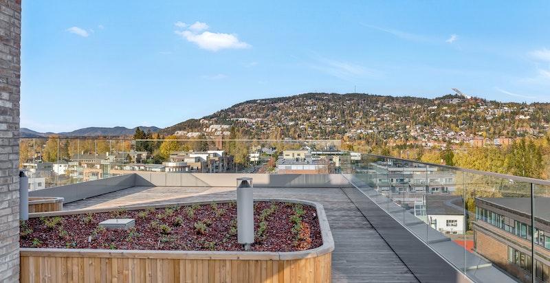 Nyt utsikten fra takterrassen. Perfekt sted å innvie nyttår!