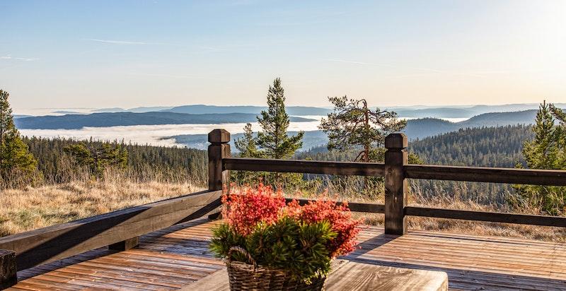 Fantastisk utsikt fra terrassen