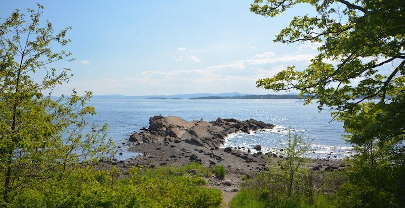 Kort vei til flotte friområder langs sjøen