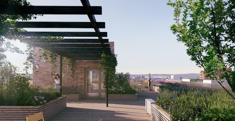 Alle bygg får felles takterrasser med optimale solforhold og flott utsikt.