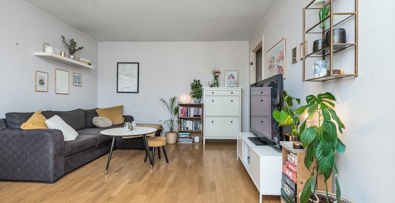 Romslig toroms leilighet med attraktiv beliggenhet på Briskeby/Frogner