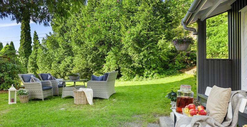 Grønne, idylliske omgivelser ute i hagen