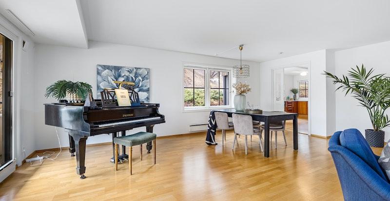 Det er meget god plass i stuen og rom for store møbler og flere soner