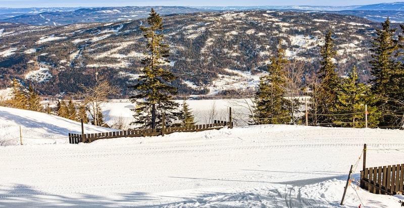 Nydelig utsikt nedover bakken og dalen