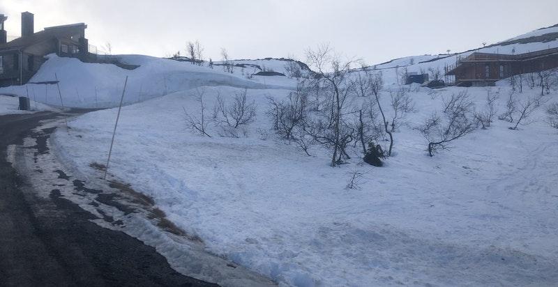 Herlige muligheter for ski i bakkene og friområdene rundt eiendommen. Foto av 25.02.2021