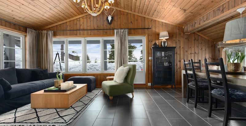 Stue med utgang til stor terrasse