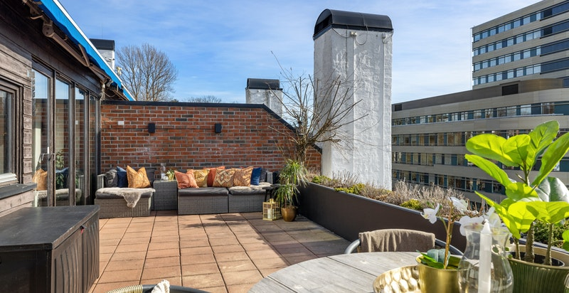 30 kvm terrasse med sol hele dagen og flott beplantning sommerstid