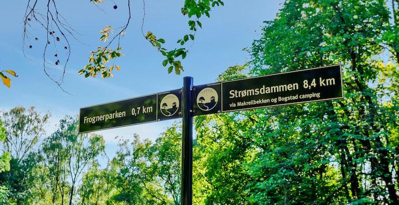 Askeveien ender opp i den Engelske park som fortsetter til Skøyen Skole, grøntområder fortsetter videre bort til Frognerparken. Flotte tur- og rekreasjonsområder rett ved!