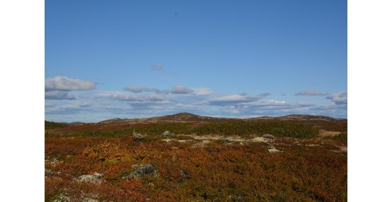 Det flotte terrenget i fjellet gir unike muligheter for utallige flotte fjelturer.