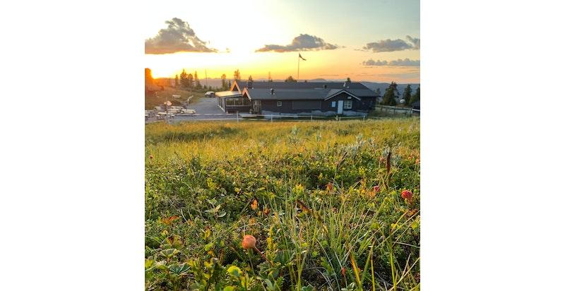 Sommer solnedgang Nystolkroken. Foto Jorn Holm-3 (003)