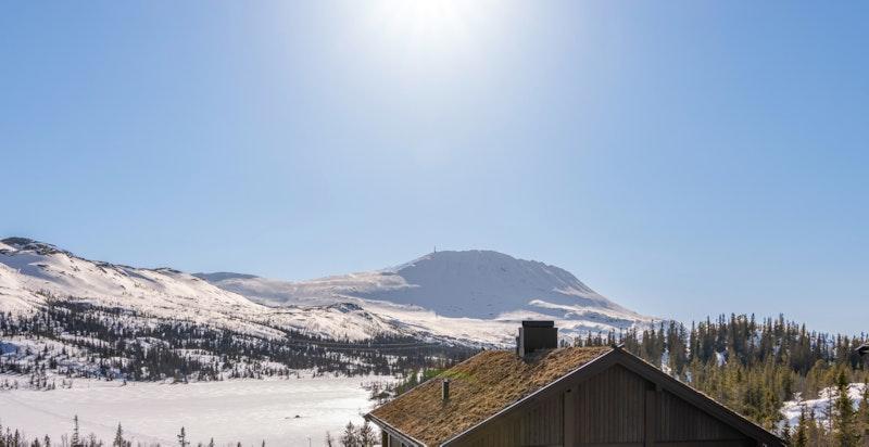 Utsikten fra Kvitåvatnvegen 516 leil. F25 på Gaustatunet ved Christopher Lejonberg