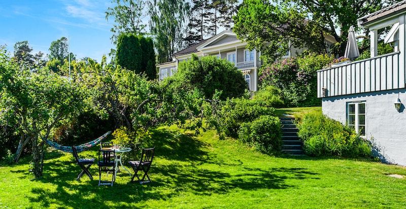 Hyggelig og solrik hage med trær, prydbusker og blomserbed