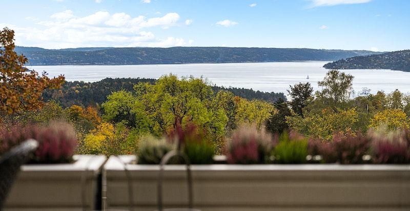 Fantastisk fjordutsikt fra sydvendt terrasse på 20 kvm