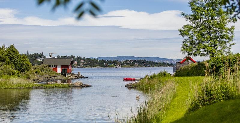 Flott utsikt mot fjorden og Oslo