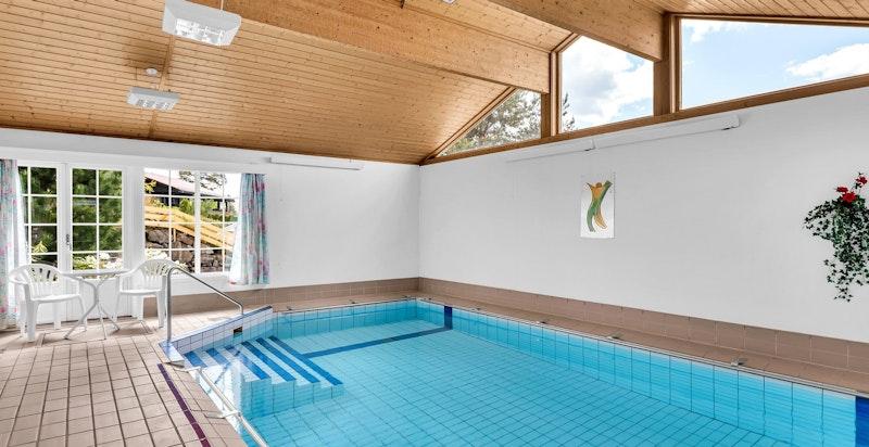 Lysthuset med felles svømmebasseng og leilighet