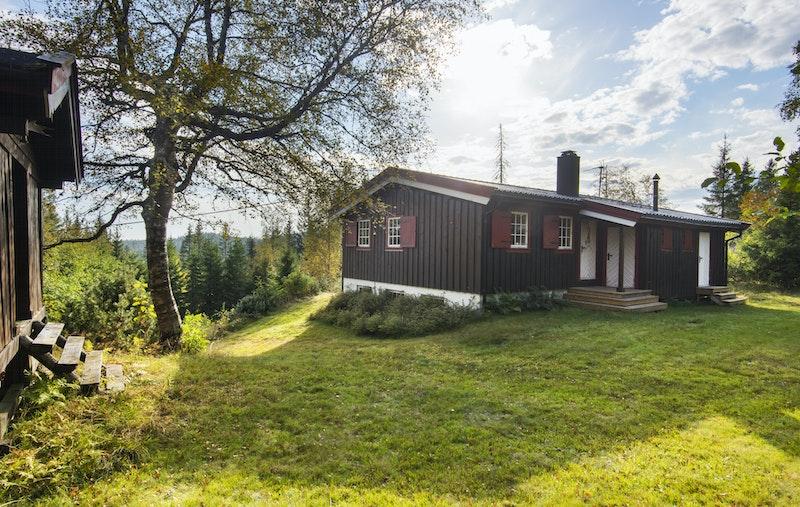 Flott tun med hytte og anneks - Pent opparbeidet tun med gressplen
