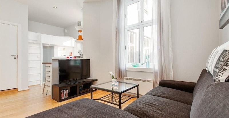 Leiligheten leies ut til en person som skal bo alene, pga leilighetens størrelse