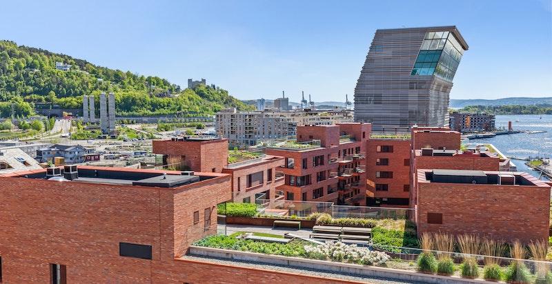 Utsikt fra takterrassen.