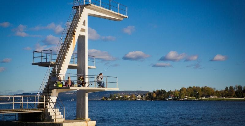 I området er badestrand kun noen minutter unna på sykkel (Holmenkskjæret og Hvalstrand)