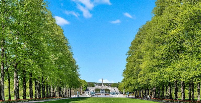 En av byens grønne og populære lunge; Frognerparken, ligger i nabolaget. Parken innbyr til tur og rekreasjon året rundt.