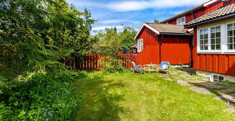 Vestvendt og solrik hage