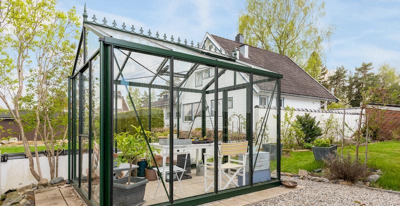 I hagen har man et hyggelig drivhus