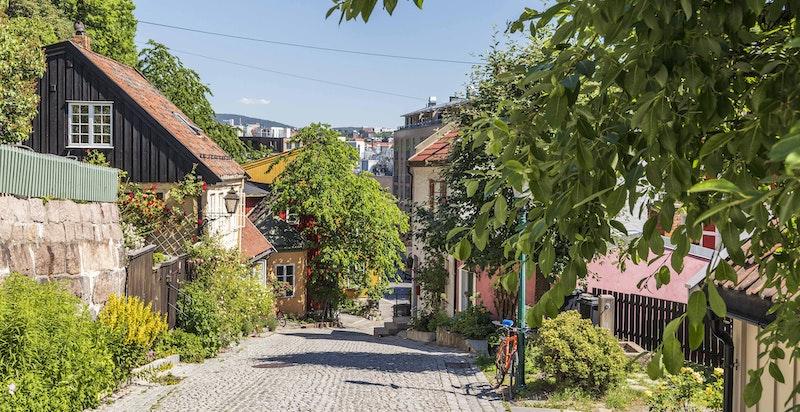 Dette er en av få gater i Oslo hvor den opprinnelige forstadsbebyggelsen er bevart gjennom hele gaten