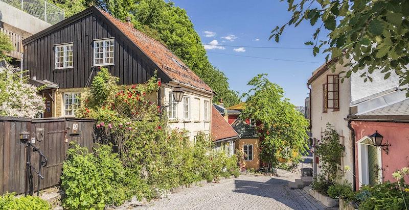 Velkommen til Damstredet - Presentert av Caroline Stensrød / Sem & Johnsen