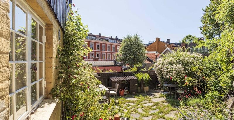 Idyll midt i byen - Frodig, usjenert hage