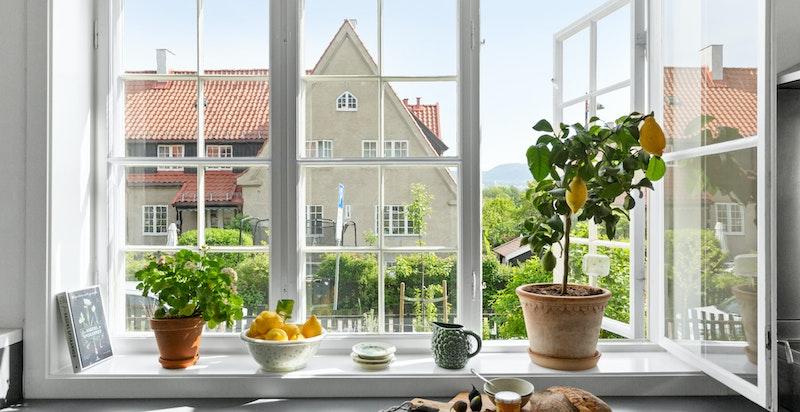 Store vinduer med hyggelig utsyn over grønne hager og vakker bebyggelse.