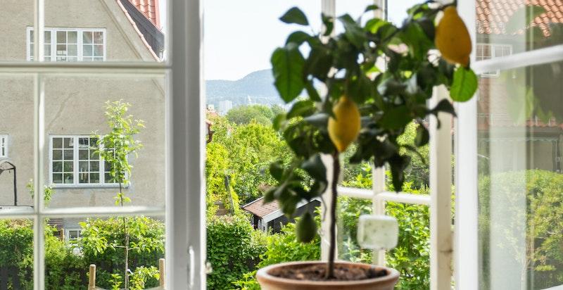 Fra flere av boligens vinduer kan man følge med på at barna løper fritt og trygt rundt i hageparsellen.og i nærområdet.