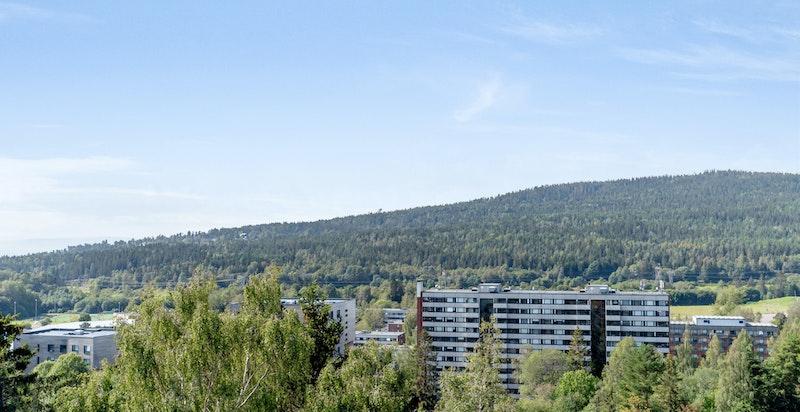 Utsikt fra felles terrasse