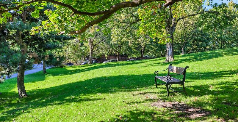 Uranienborgparken er et populært sted å oppsøke for solbading.