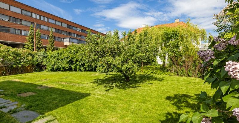 Solrik og idyllisk hage