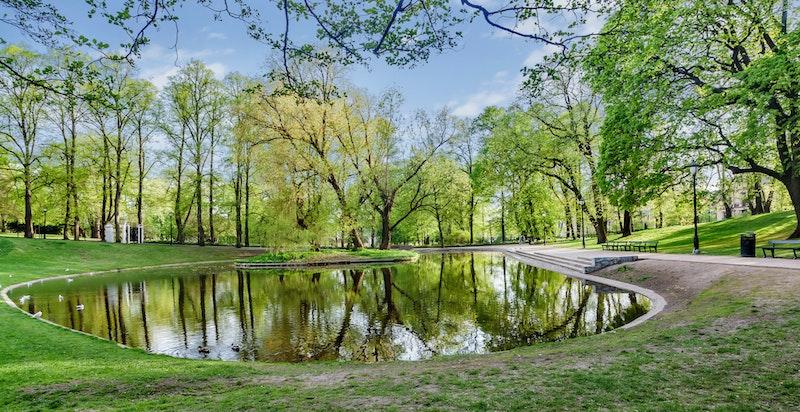 Slottsparken byr på fine rekreasjonsmuligheter